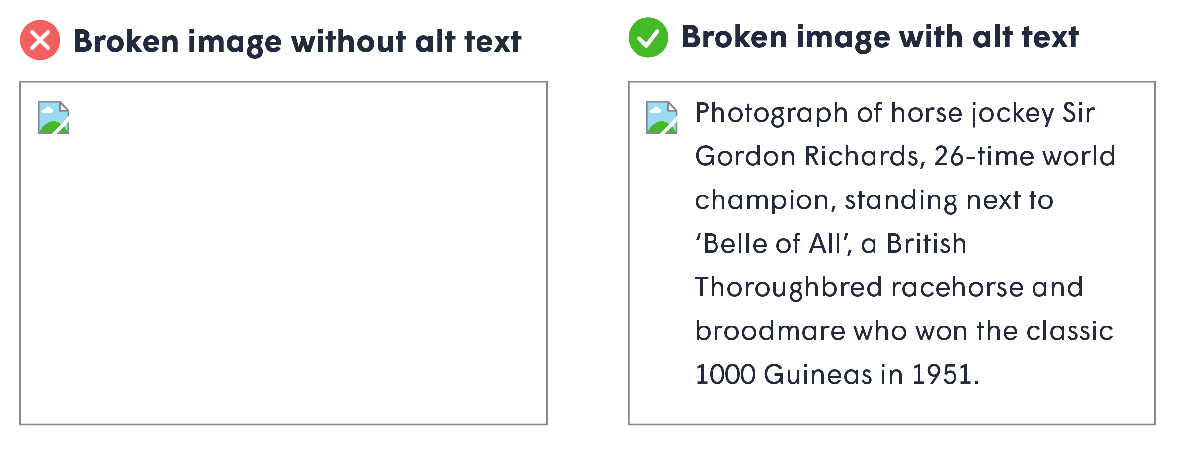 illustration showcasing the difference between having, and not having, and alt text in your image